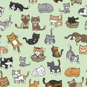 Cat Doodles on Green