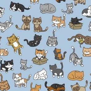 Cat Doodles-on Blue