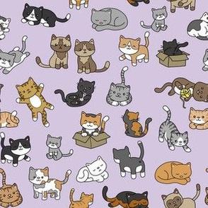 Cat Doodles on Purple