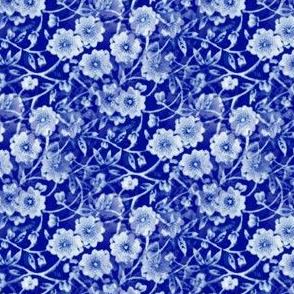Calico Blue