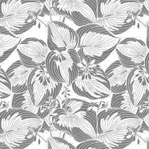 Hosta Garden | Gray on white