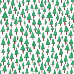 winter evergreen forest