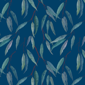 Eucalyptus leaves on blue /2/ scale