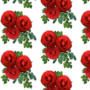 Large Roses