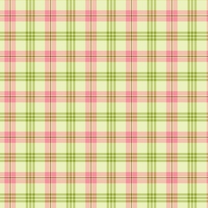 Pink and Green Plaid - Christmas Cactus Collection