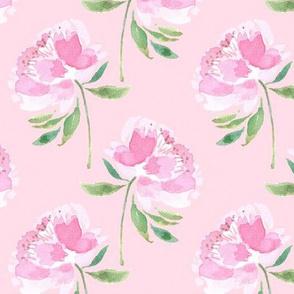 Peonies on Pink Ground