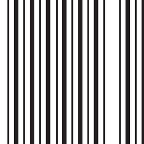 Double_Black_Stripe_white_large