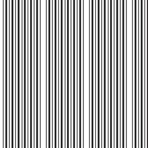 Double_Black_Stripe_white_small