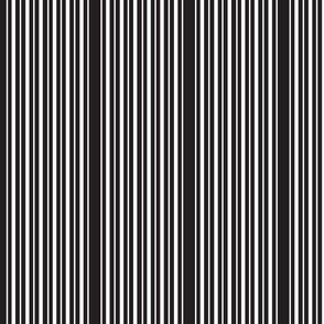 double_black_stripe_black_small