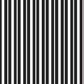 double_black_stripe_black_unbroken