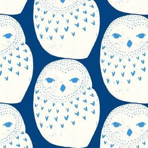 Snowy Owl Blue