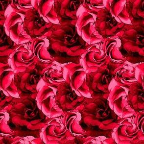floral_redness