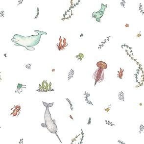 Nolan's Under the Sea Animals