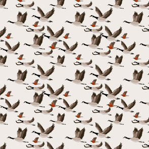 gueth_migratory_birds_half_size