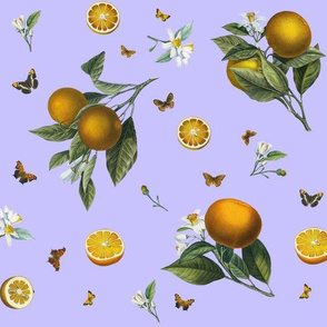 Oranges and Orange Butterflies on Lilac