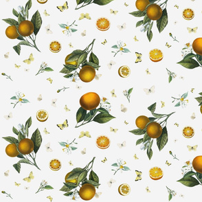 Oranges and White Butterflies on Light Grey