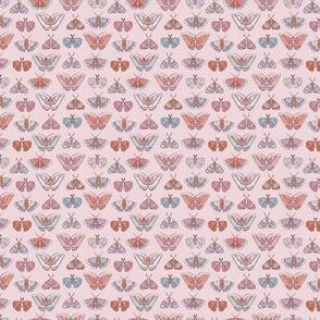 Wild Flowers Moths