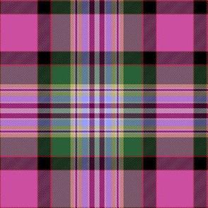 """Dundee pink tartan, 6"""""""