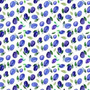 Watercolor plums mini