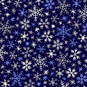 Snowfall (Navy and Silver)