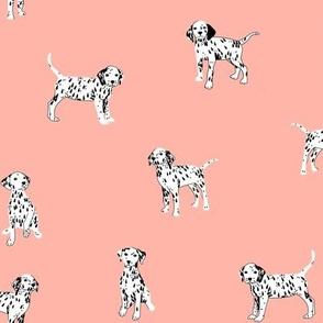 Dalmatian Puppies on Blush Background