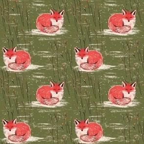 Fox Dream