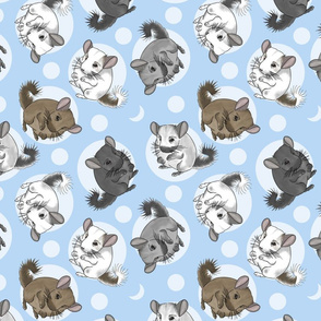 Chinchillas and moon dots - medium blue
