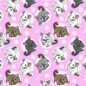 Chinchillas and moon dots - medium pink