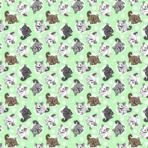 Chinchillas and moon dots - small green