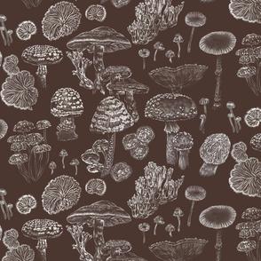 Mushrooms Dark Brown White