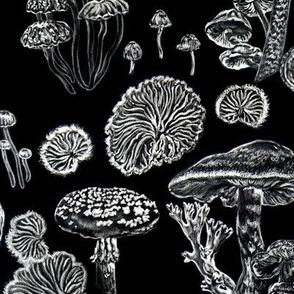 Mushrooms Black White Witchy Pattern