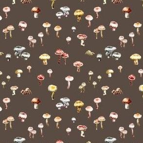 Ditsy Mushrooms Brown Watercolor