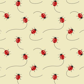 Lady Bugs on the Move, Crawling Red Insects, Tiny Creatures