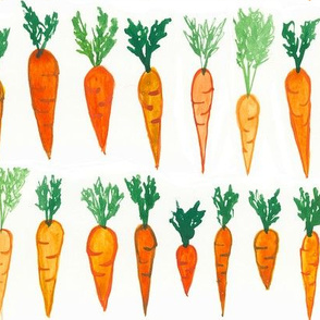 Big Carrot Patch