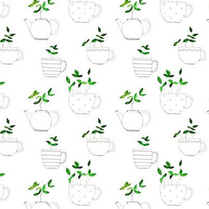 Tea plants in tea cups - smaller scale