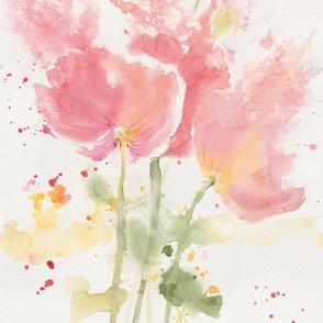 Poppies_Alive_LS