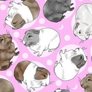 Guinea pigs and moon dots - large pink