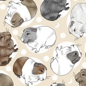 Guinea pigs and moon dots - large tan