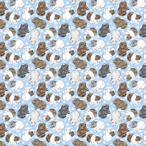 Guinea pigs and moon dots - small blue