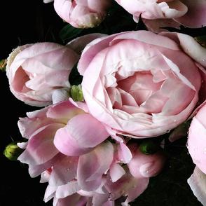 Dark_Floral_3_Large_Format