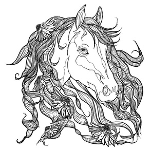 horse_coloring_book