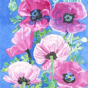 Ink Pink Poppies