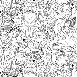 Fox Friends in Festive Foliage