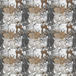 Goat herd faces - small