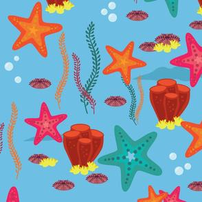 starfish delight