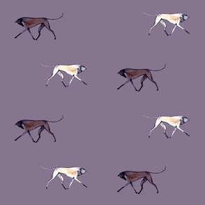 trotting greyhounds, violet