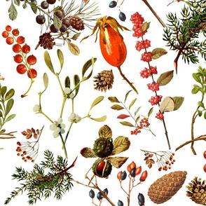 vintage botanical winter -lg.