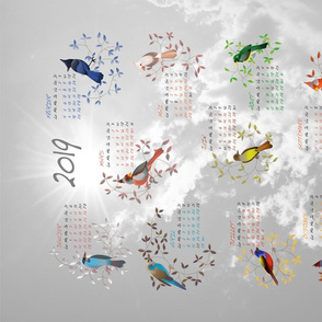 Birds Calendar 2019 (French Version!)