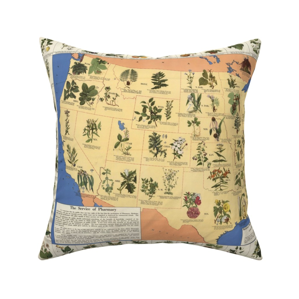 """Catalan Throw Pillow featuring 1932 Medicinal Plants of America (27""""W) by thinlinetextiles"""