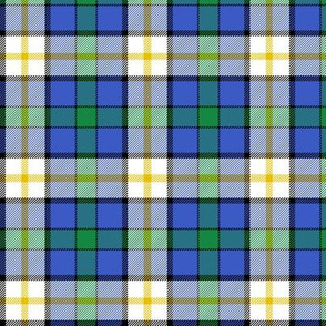 "Inverary township of Ontario tartan, 3"" bright"